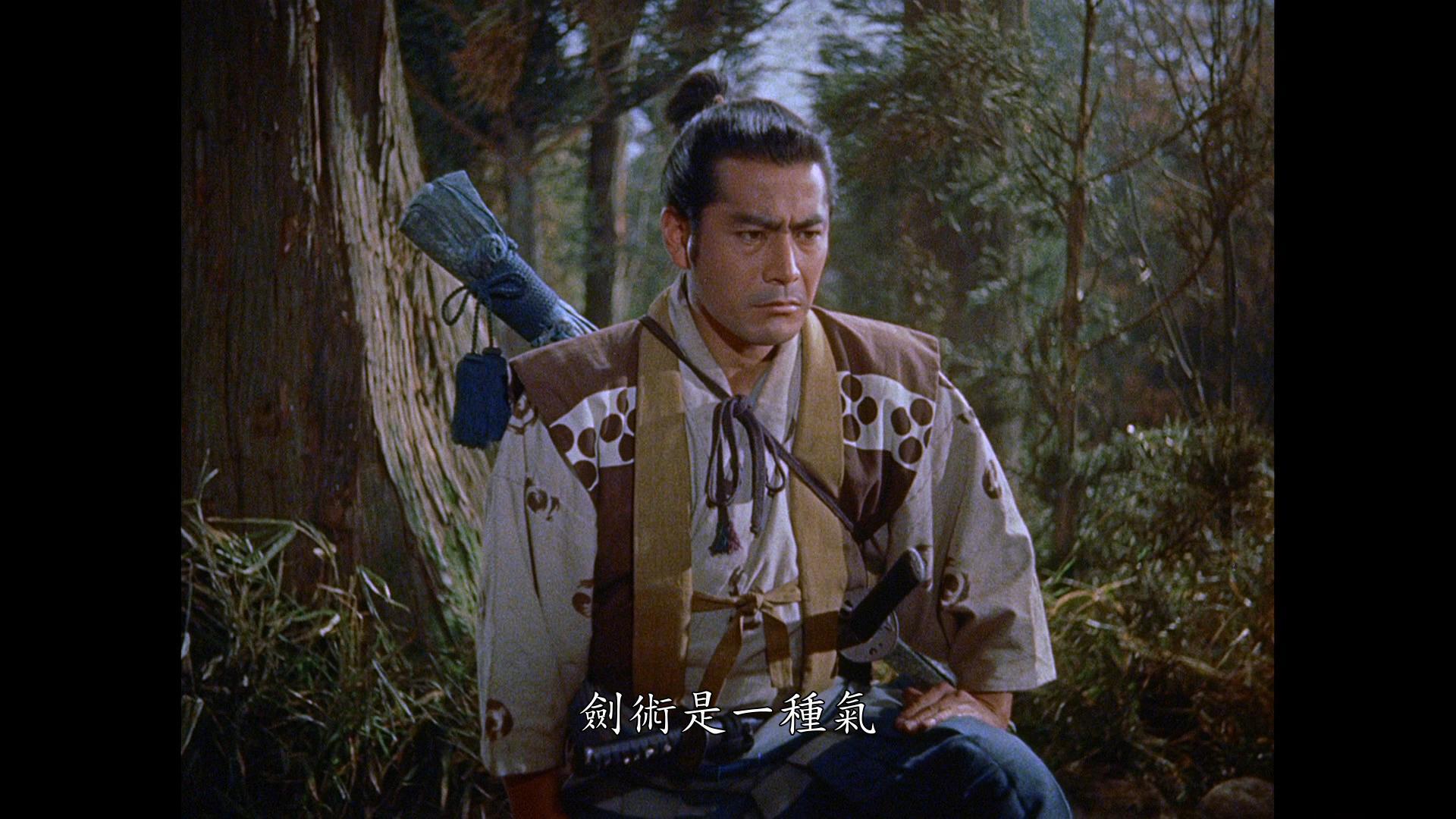 Samurai_II_03.jpg