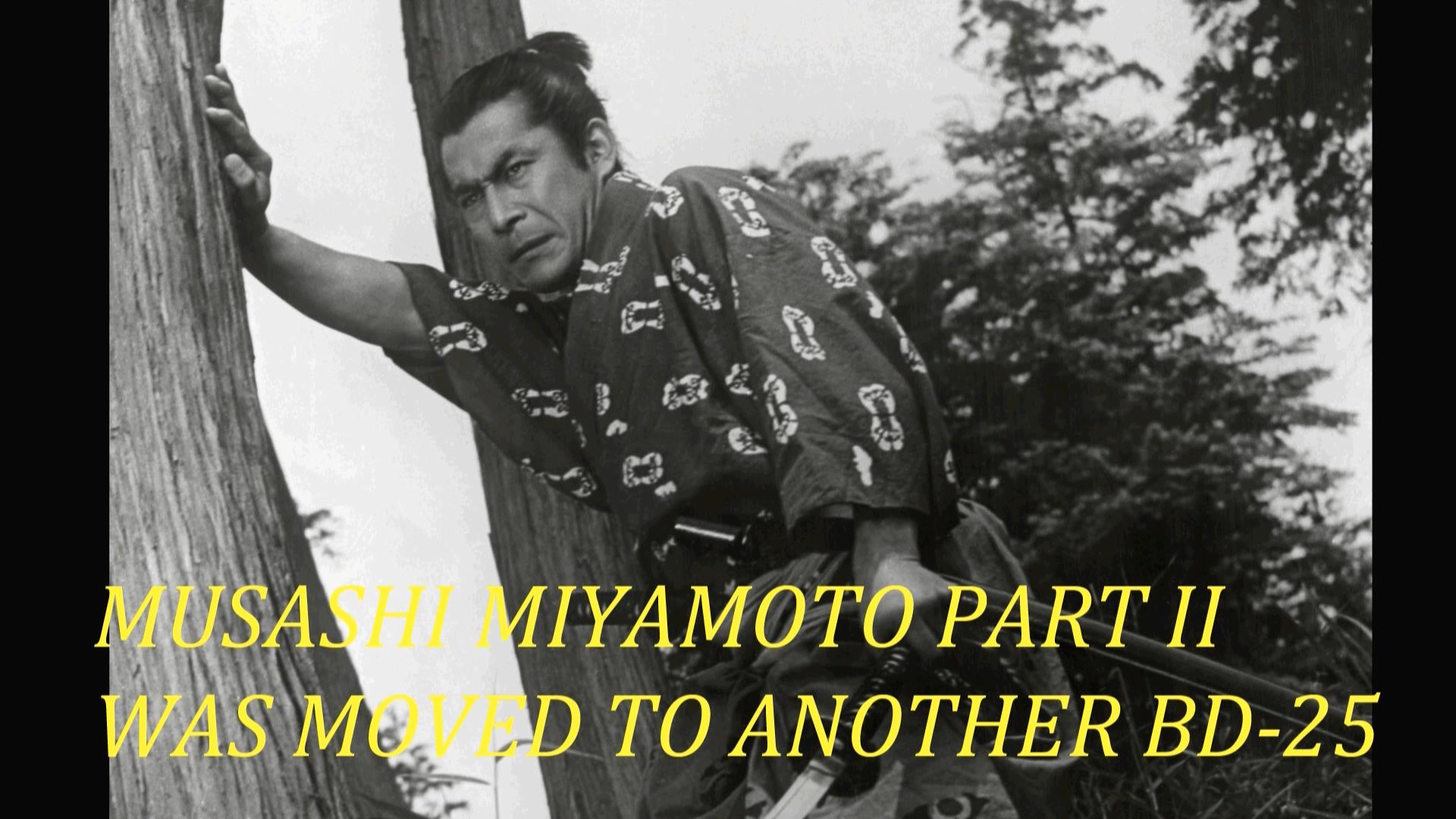 Samurai_I_01.jpg