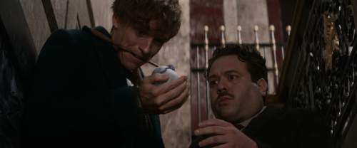 Fantastic-Beasts-and-Where-to-Find-Them-2016-BluRay-2160p-Atmos-TrueHD7-1-x265-10bit-CHD.mkv_snapshot_00.10.34.png