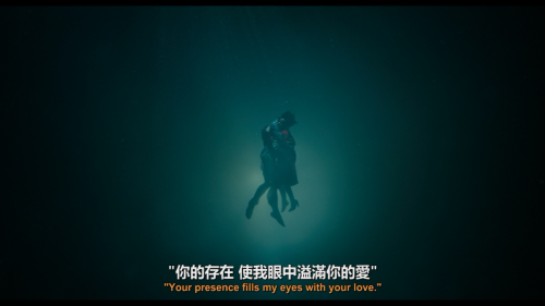 The-Shape-of-Water-2017-BluRay-1080p-AVC-DTS-HD-MA5.1-A236P5OurBits.iso_20180304_141522.093.png