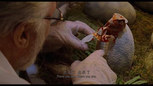 Jurassic-Park-1993-2160p-UHD-Blu-ray-HEVC-DTS-X-7.1-wezjhOurBits_20180527_120216.533.jpg
